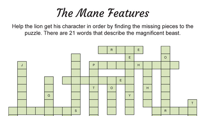 The Mane Features Puzzle