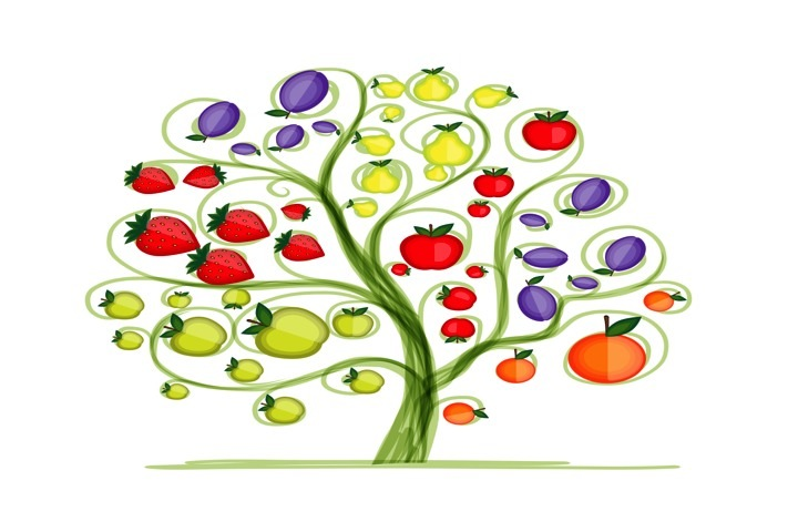 Fruit tree for your design